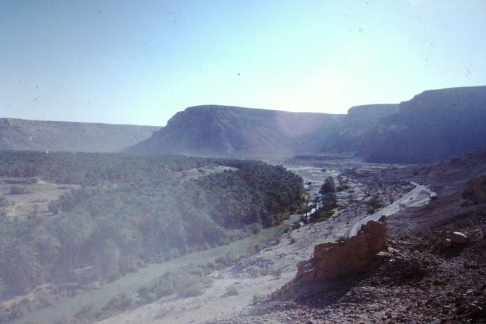 Wadi Adm